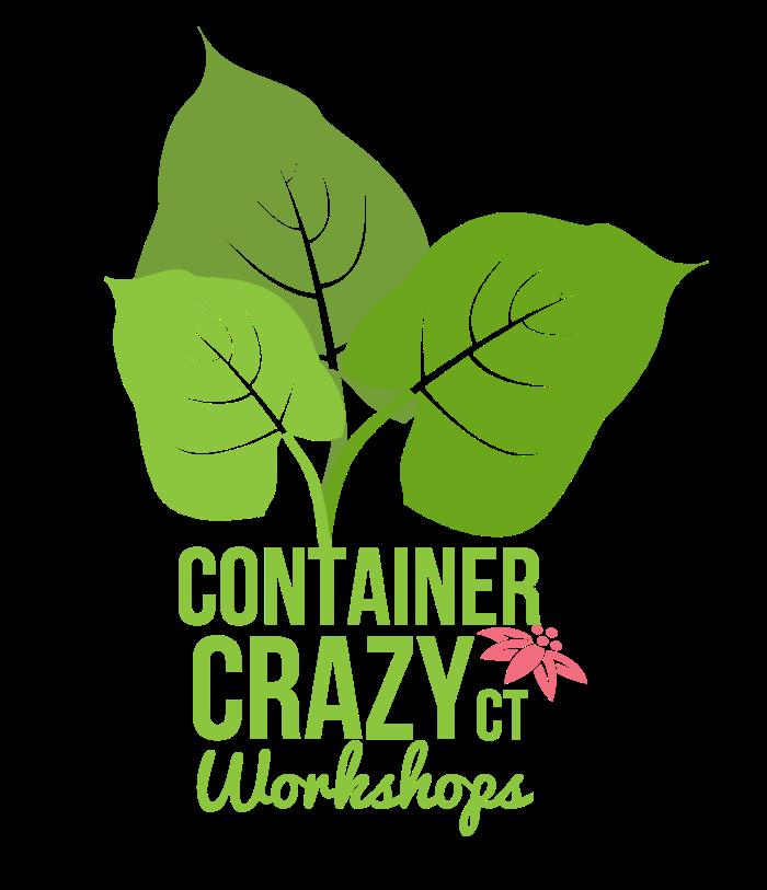 CC Logo COLOR Workshops