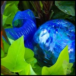 WorkshopsCT Garden Art_0001