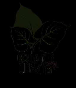 cc-logo-black-wkshp