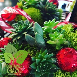 wreaths-by-container-crazy-ct-of-broad-brook_0002