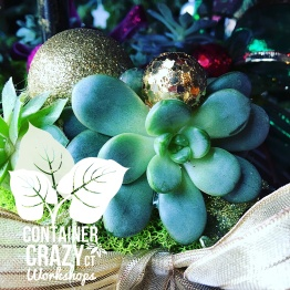 wreaths-by-container-crazy-ct-of-broad-brook_0006