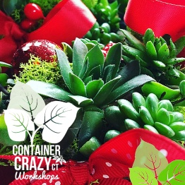 wreaths-by-container-crazy-ct-of-broad-brook_0008