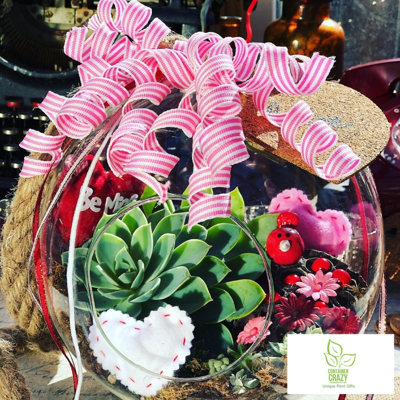 Valentines Plant Gifts C Testa Copywrite_0002