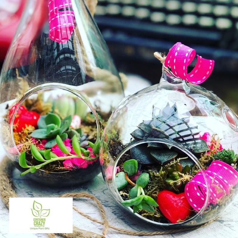 Valentines Plant Gifts C Testa Copywrite_0008