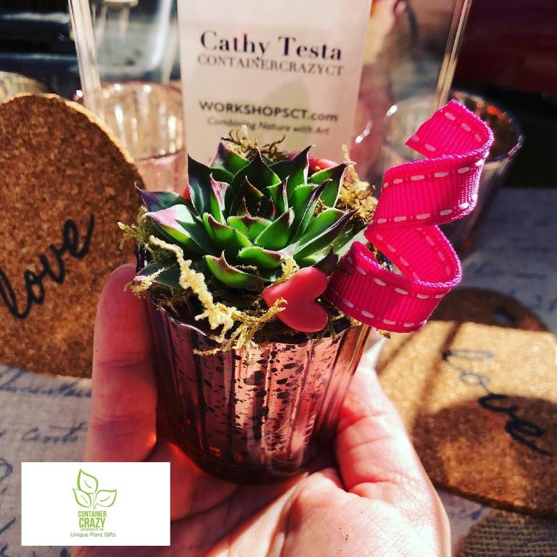 Valentines Plant Gifts C Testa Copywrite_0009